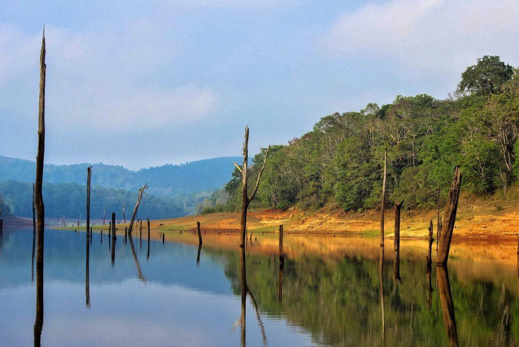Thekkaddy Kerala