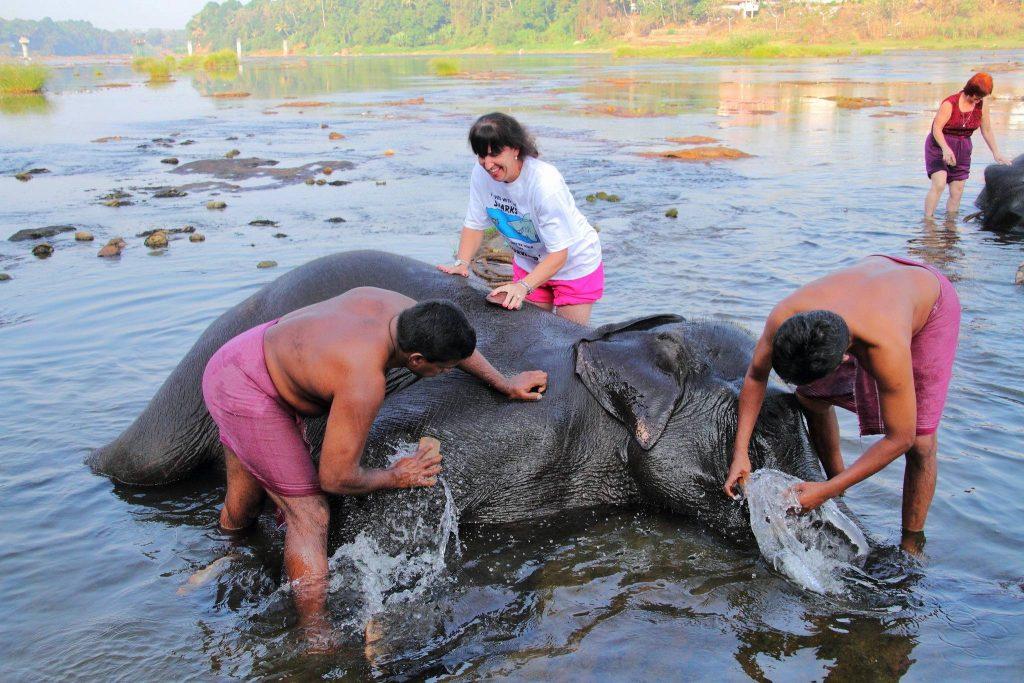 Elephant bathing places to visit in Thekkady