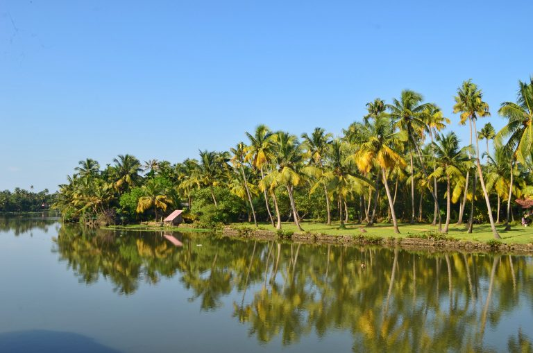 Backwaters of Kerala- places to visit in Kochi