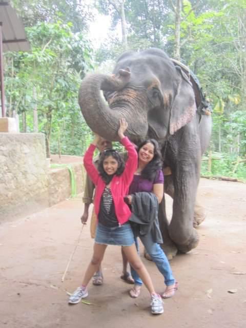 Elephant ride in Munnar Kerala