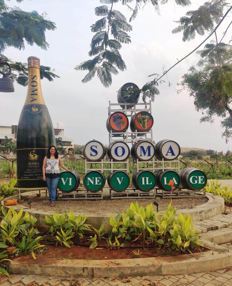 Vineyards in nashik, soma vine village