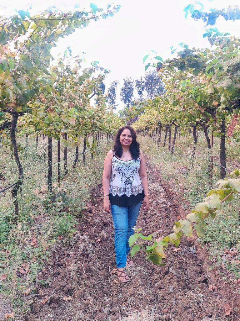 wineries in nashik