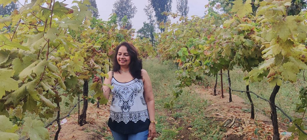 soma vineyards